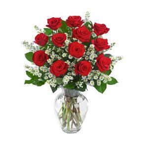 Baile de San Valentín 1250398Cuba-Flores-12-Rosas-Rojas-Enlarge